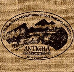 画像1: ガテマラ アンティグア(定番)