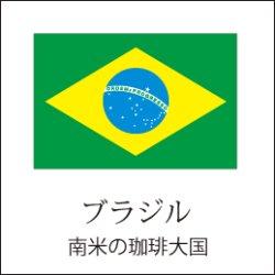 画像1: ブラジルサントスNo.2